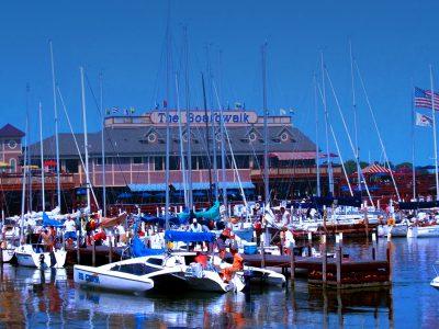 Bay-Week-2010-A-Dock-Gets-Busy2